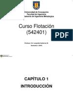 Capitulo_1-Introduccion__Flotacion.pdf