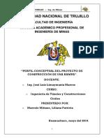 perfil conceptual(1).docx
