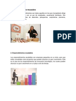 Tipos Proyectos de Emprendimiento