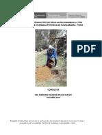 Informe Test de percolacion La Tiza 18-10-18.docx