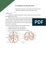 308379437-Sistem-Ventrikel-Dan-Pelapis-Otak.docx