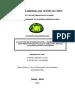 PROYECTO DE INVESTIGACION condor y place.docx