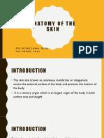Anatomy of the skin.pptx