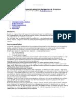 estructura-desarrollo-plan-negocios-e-business.doc