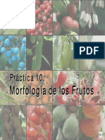 FISIOLOGIA VEGETAL (2).pdf