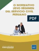 Marco Normativo Servicio Civil