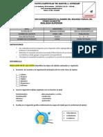 examenes segundo parcial.docx