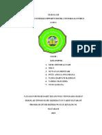 MAKALAH fix CITOMEGALOVIRUS CMV.docx