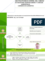 Presentación del proyecto.pptx