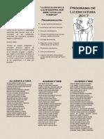 programa licenciatura.docx