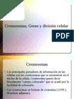 Cromosomas, Genes y Division Celular(2)(1)