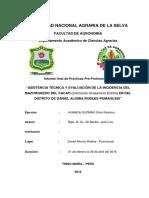 INFORME FINAL HUANCA.docx