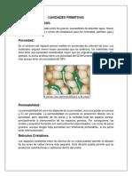 CAVIDADES-PRIMITIVAS.docx