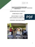 INFORME FINAL DE RESULTADOS DE EXTENSIONISTAS  2017 AGRICOLA (CIERRE) OK.doc