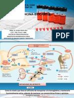 1.- Dr Martin Prac Sem 6 Hemo Cc 1sem 6 Bases Teoricas