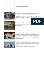 ANIMALES-HIBRIDOS.docx