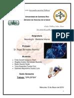 neuro-epilepsia.docx