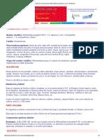 Cultivo de Yerba Del Pollo (Alternanthera Pungens) y Usos, Herbotecnia