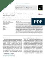 melero2015.pdf