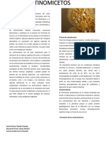 Actinomicetos.docx