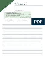 FISA LUCRU pronumele.docx