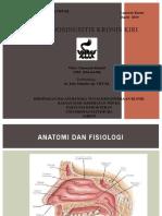 Rhinosinusitis kronik