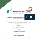 TESIS-I.-en-A.-KARINA-HERNANDEZ-HUESCA.pdf