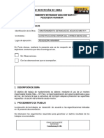 Informe Recepción Piscina 1
