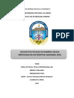 Manuel_Ascuña_Tesis_Titulo_2016.pdf