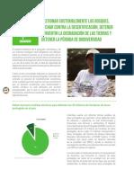 Objetivos 15 - 16 Desarrollo Sostenible