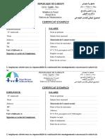 Certificat Emploi