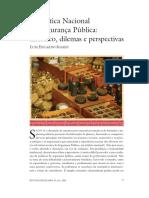 segurança-publica-no-brasil-até-2007.pdf
