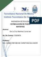 REPORTE ESTIMULACION ISEL.docx