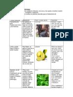 Recetas de plantas medicinales (1).docx