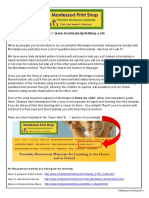 Ciclul de viata a unei buburuze.pdf