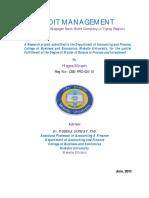 CREDIT_MANAGEMENT_A_Case_Study_of_Wegage.pdf