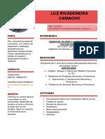 CURRICULUM LUZ.pdf