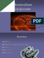 Murrin Final PFalciparum