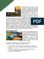 Los Incas, ubicacion, sociedad, logros, pueblos, ciudades, economia.docx