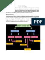 Tejido Neuronal Libro Biomecanica