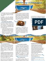 Brochure Arequipe Alpina