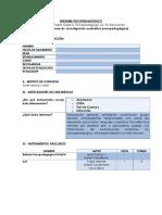 MODELO DE INFORME PSP, ..pdf