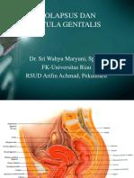 Prolaps Dan Fistula
