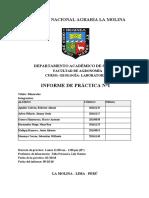 Informe GEOLOGIA 1