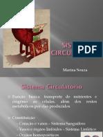 Sist Circulatorio.pdf