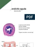Apendicitis v2