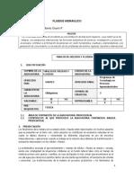Transcrip  Fluidos1ra parte.docx
