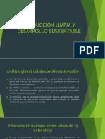 Produccion Limpia y Desarrollo Sustentable