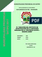 PERFIL  IIAP - SATIPO - 2017 TER..pdf