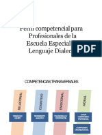 Perfil competencial Profesionales